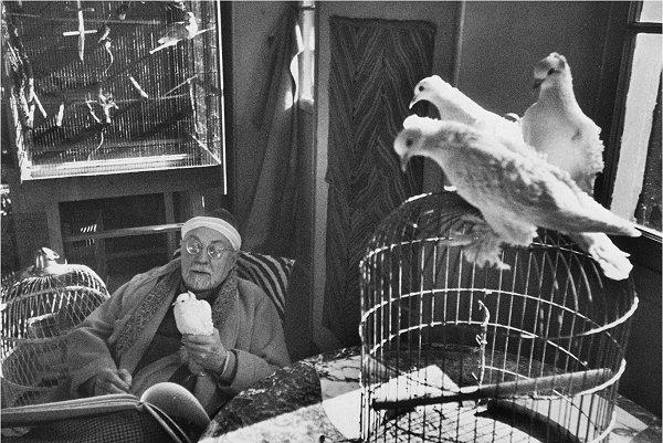 Potret pelukis Henri Matisse oleh Henri Cartier-Bresson. Pose-pose alami lebih mudah didapatkan bila subjek foto berada di lingkungan yang nyaman dan familiar