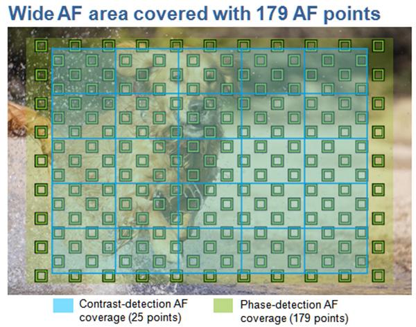 Cakupan titik-titik fokus phase detection (kotak hijau) sangat luas, memudahkan untuk tracking subjek bergerak.