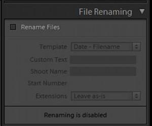 file renaming 1