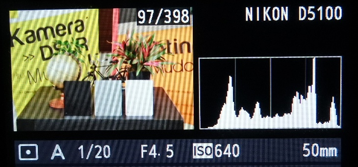 Grafik histogram berada di tengah, foto terang gelapnya pas