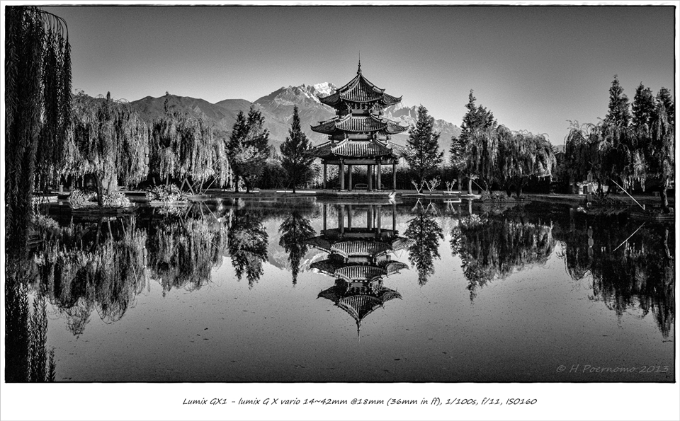 shangrila bw frm