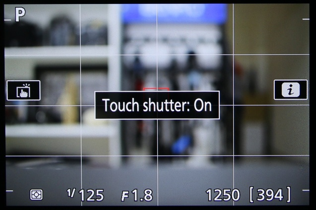 Tampilan live view di D5500, kita bisa sentuh area di layar untuk menentukan fokus, juga kalau mau bisa pakai touch shutter