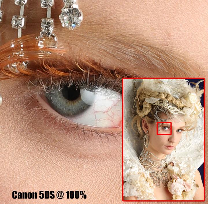 Detail dari sensor 50 MP di Canon 5DS