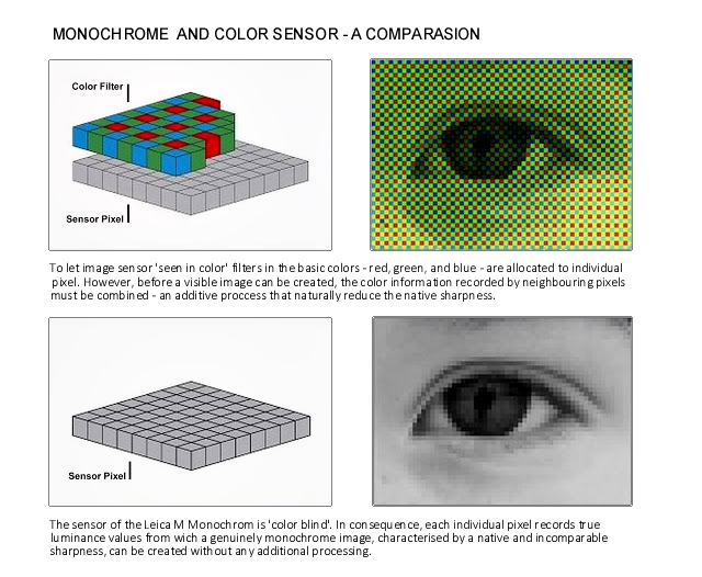 Monochrome and Color Sensors 01