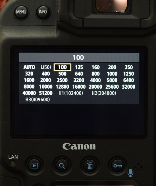 Kamera masa kini punya banyak pilihan ISO, terasa overwhelming bagi pemula