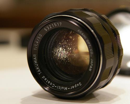 lens-fungus