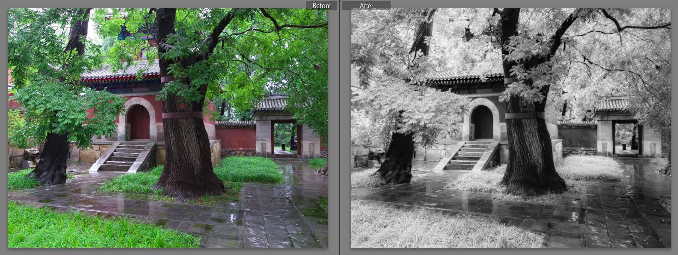 Contoh foto lainnya yang dikonversi gaya infrared hitam putih