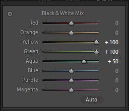 Setting utama yang berubah saat mengaktifkan preset Inframerah. Warna Hijau dan Kuning di +100 sehingga warna hijau tanaman menjadi putih.