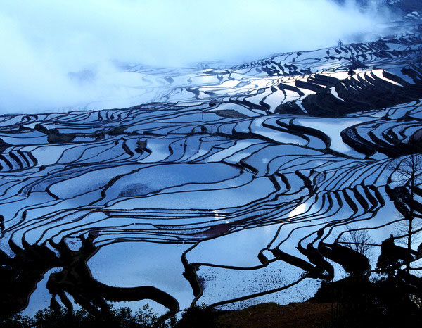 tour-fotografi-yuanyang-yunnan-2