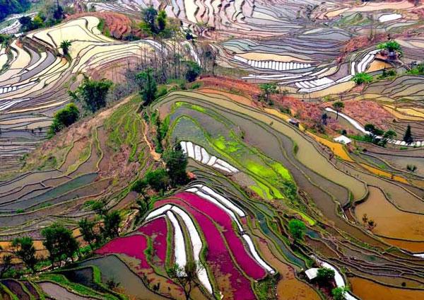 tour-fotografi-yuanyang-yunnan