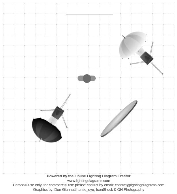 workshop-strobist-model