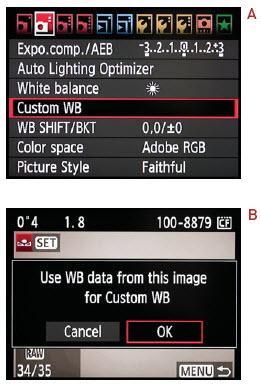 Custom WB