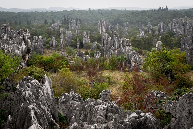Stone Forest, 86 km dari Kunming, Yunnan