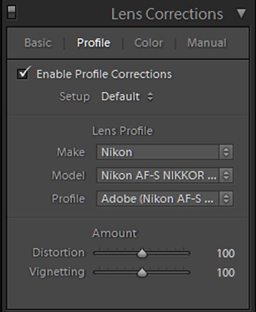Panel lens profil di Lightroom