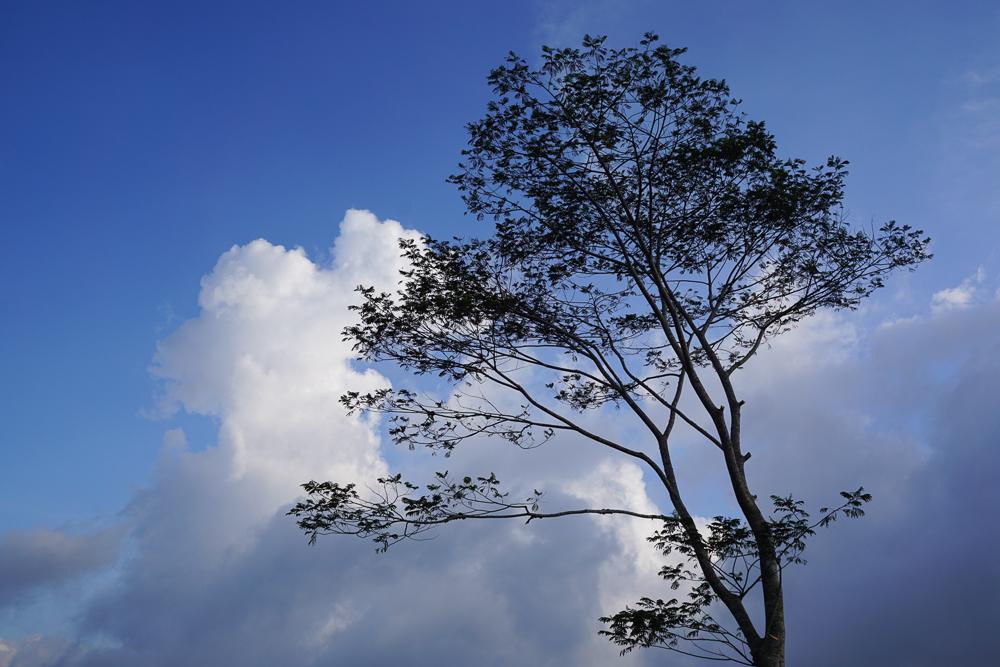 Contoh foto dengan warna langit yang biru banget