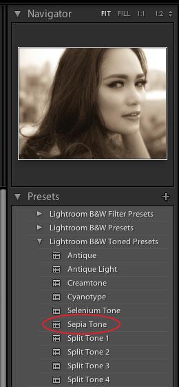sepia-preset-lightroom