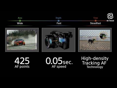 Angka-angka seputar auto fokus ini mungkin membuat anda bingung