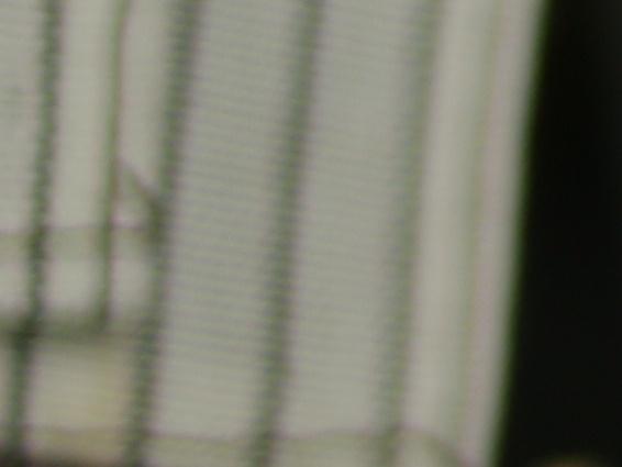 Bagian tepi agak gelap karena vignetting di f/2