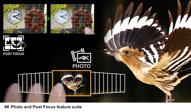 fz2500-post-focus-4k