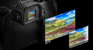 fz2500-view-finder